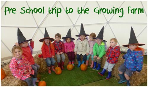 The Spinney Day Nursery Hoole